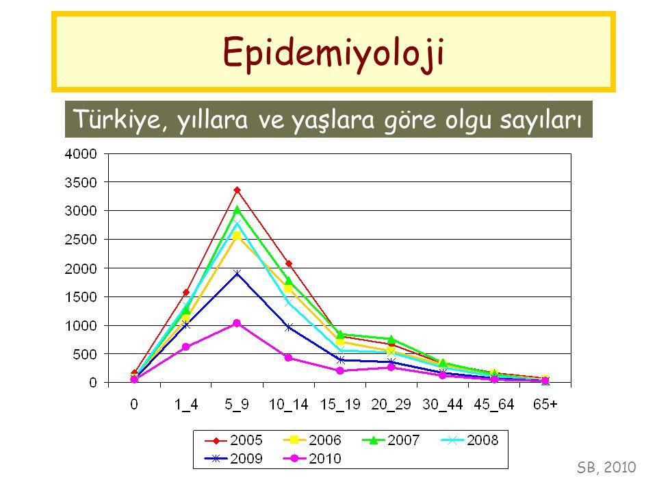 Epidemiyoloji Türkiye, yıllara ve yaşlara göre olgu sayıları SB, 2010