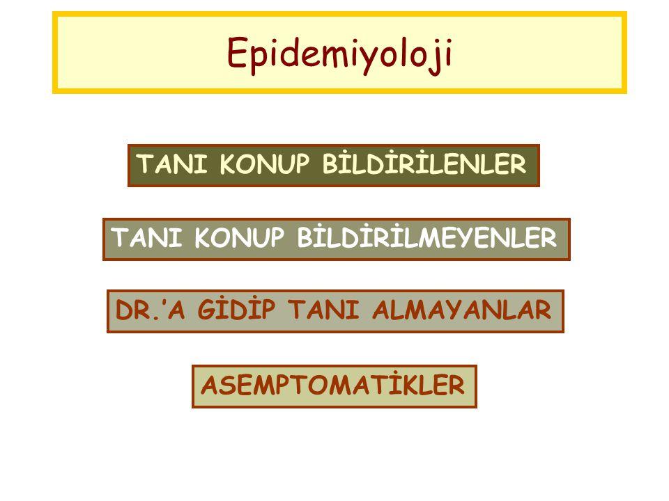 Epidemiyoloji ASEMPTOMATİKLER DR.'A GİDİP TANI ALMAYANLAR TANI KONUP BİLDİRİLMEYENLER TANI KONUP BİLDİRİLENLER