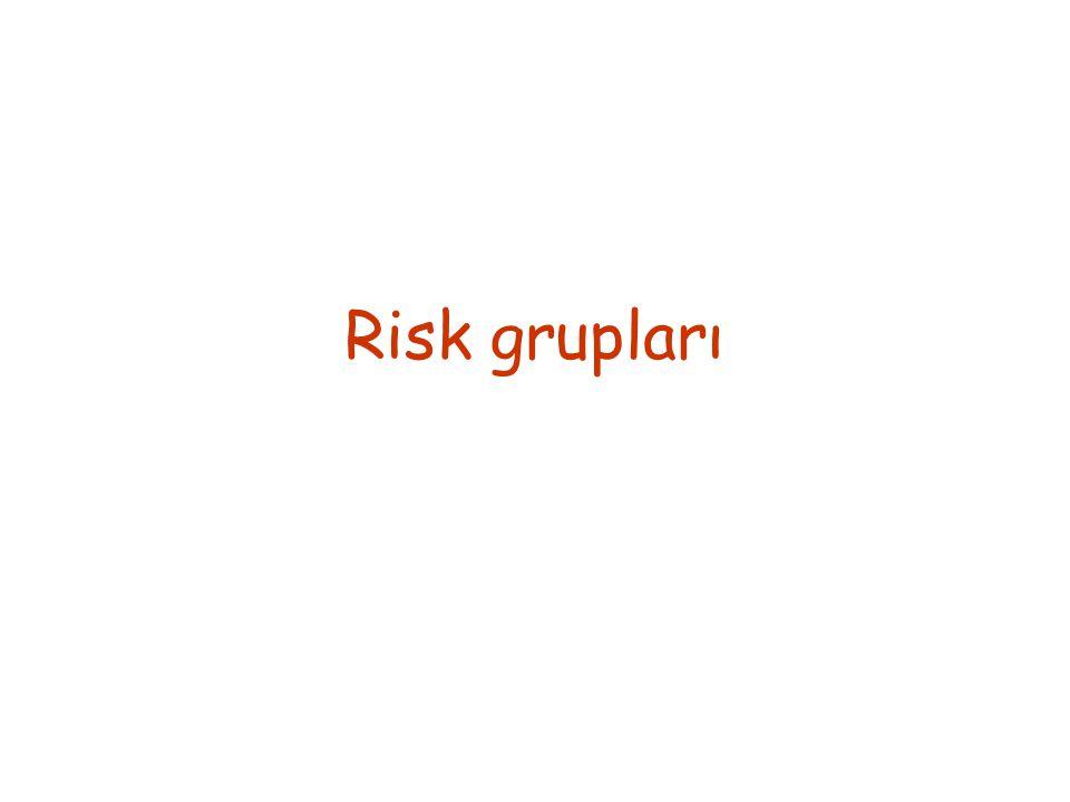 Risk grupları