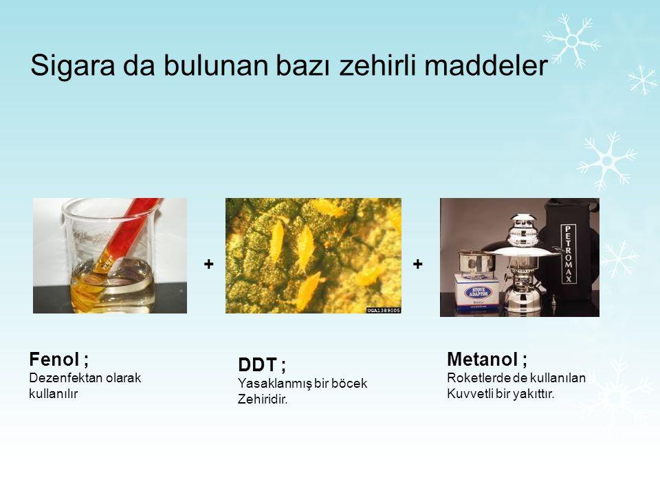 Sigara da bulunan bazı zehirli maddeler Kurşun ; Zehirlidir, yüksek dozu ölümcüldür. Naftalin ; Güve ilacında bulunur Kadmiyum ; Pil yapımında kullanı