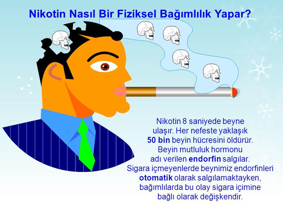 Nikotin Nasıl Bir Fiziksel Bağımlılık Yapar.Nikotin 8 saniyede beyne ulaşır.