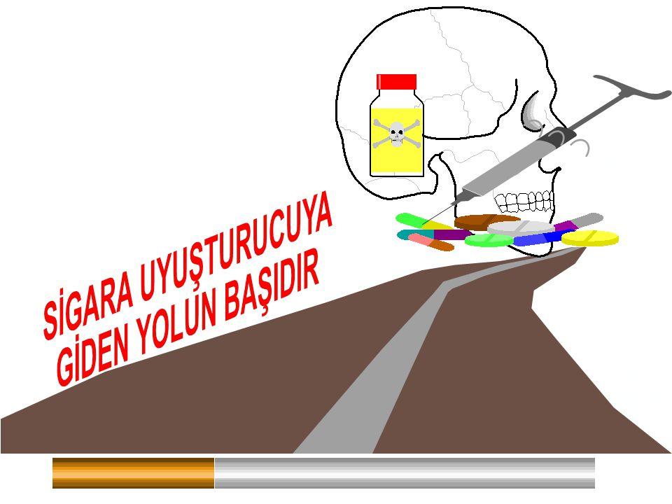 . Sigara Kurbanlarının % 90'ı 19 Yaşından Önce Sigara Bağımlısı Olmaktadır.