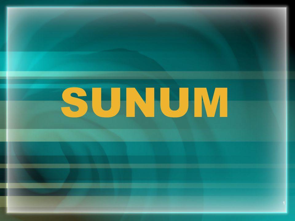1 SUNUM