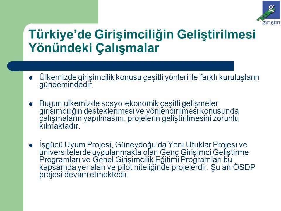 Türkiye'de Girişimciliğin Geliştirilmesi Yönündeki Çalışmalar Ülkemizde girişimcilik konusu çeşitli yönleri ile farklı kuruluşların gündemindedir. Bug