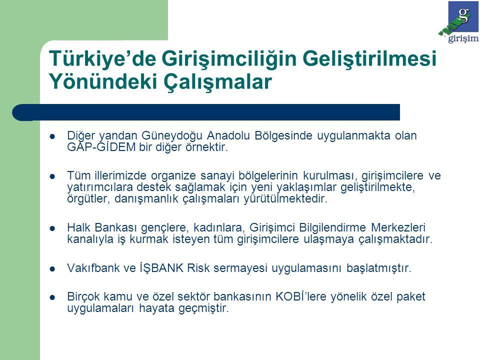 Türkiye'de Girişimciliğin Geliştirilmesi Yönündeki Çalışmalar Diğer yandan Güneydoğu Anadolu Bölgesinde uygulanmakta olan GAP-GİDEM bir diğer örnektir