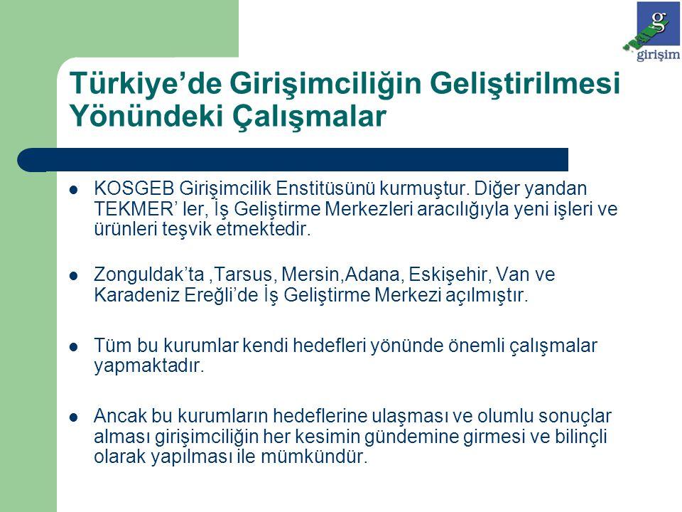Türkiye'de Girişimciliğin Geliştirilmesi Yönündeki Çalışmalar KOSGEB Girişimcilik Enstitüsünü kurmuştur. Diğer yandan TEKMER' ler, İş Geliştirme Merke