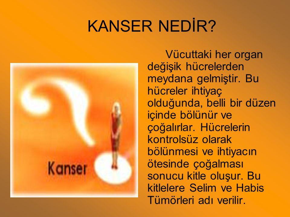 SUNUŞUN İÇERİĞİ Kanser Nedir? Dünyada ve Türkiye'de Meme Kanseri Görülme Sıklığı Nedir? Memenin Anatomisi Memedeki Fizyolojik Değişiklikler Meme Kanse