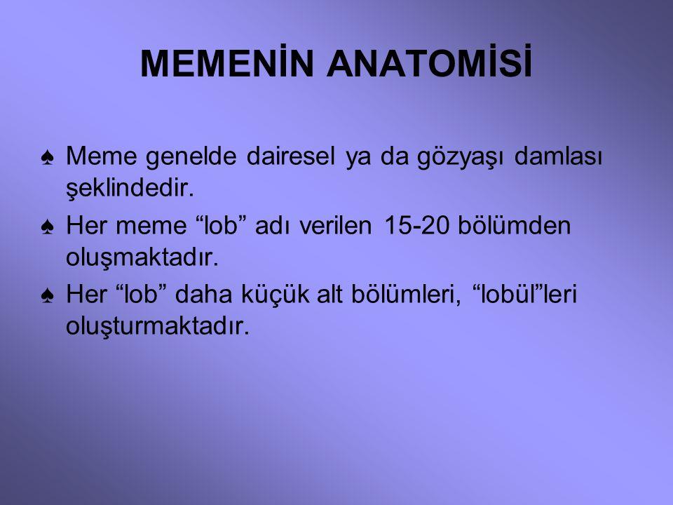 TÜRKİYE'DE MEME KANSERİ GÖRÜLME SIKLIĞI NEDİR? ♠ Türkiye'de sağlıklı bir istatistik bulunmuyor. ♠ 1999 Türkiye sağlık istatistiklerine göre kadınlarda