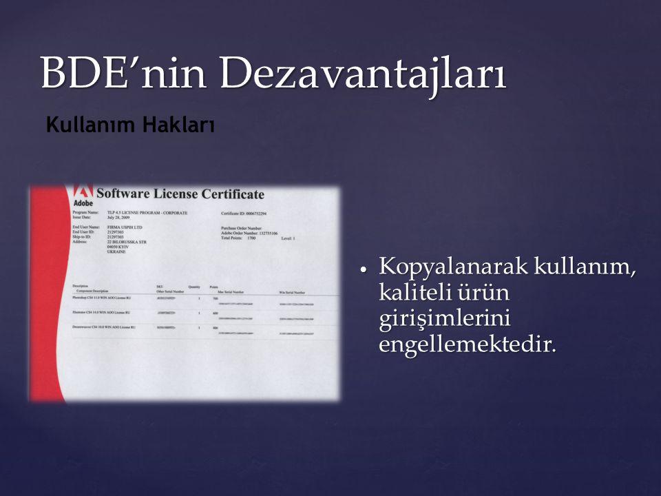 BDE'nin Dezavantajları  Kopyalanarak kullanım, kaliteli ürün girişimlerini engellemektedir. Kullanım Hakları