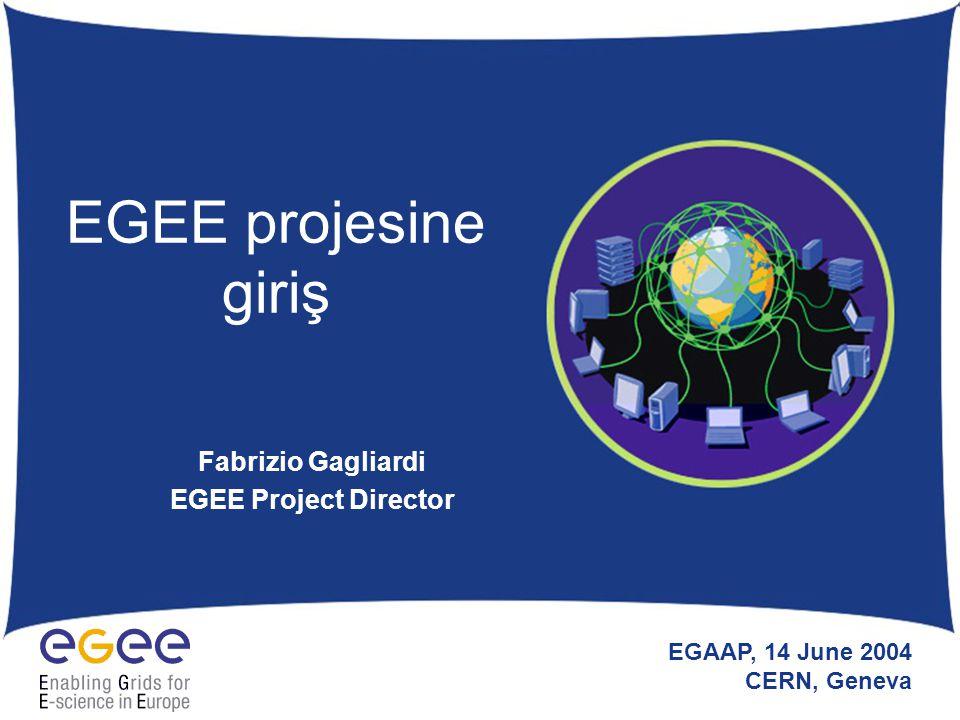 EGAAP - June 2004 - CERN 12 EGEE Örnek Uygulamaları (II) Biyomedikal –Biyoinformatik (gen/protein veritabanları dağılımları) –Tıbbi uygulamalar (perdeleme, epidemiyoloji, görüntü veritabanları dağılımı, tıbbi görüntü işlemesi için paralel algoritmalar, simülasyon, vb.) –Etkileşimli uygulama (insansal denetim ya da simülasyon) –Güvenlik/gizlilik kısıtları Heterojen veri türleri (gensel, proteinsel, görüntü biçimleri) Sık sık yapılan veri güncellemeleri Karmaşık veri kümeleri (tıbbi kayıtlar) Uzun dönem arşivleme ihtiyaçları