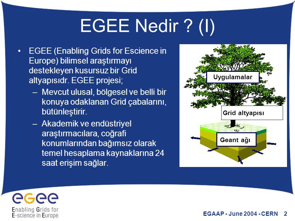 EGAAP - June 2004 - CERN 2 EGEE Nedir ? (I) EGEE (Enabling Grids for Escience in Europe) bilimsel araştırmayı destekleyen kusursuz bir Grid altyapısıd