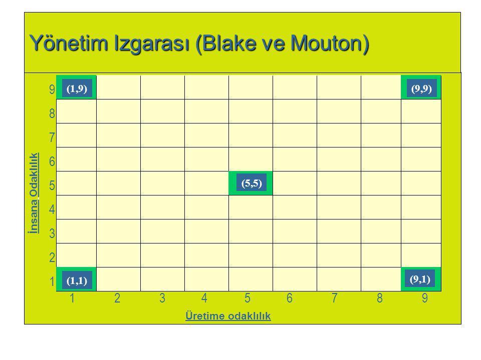 Yönetim Izgarası (Blake ve Mouton) Üretime odaklılık 987654321987654321 1 2 34 5 6 7 89 İnsana Odaklılık (1,9) (1,1) (5,5) (9,9) (9,1)