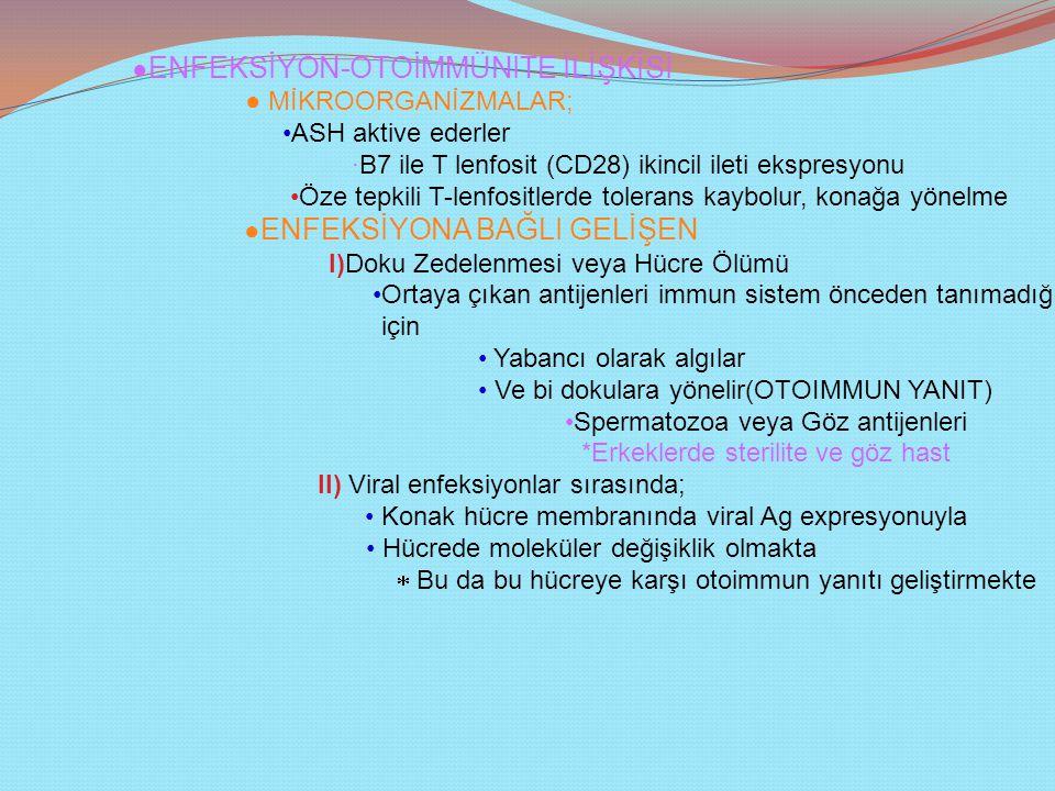 ● ENFEKSİYON-OTOİMMÜNİTE İLİŞKİSİ ● MİKROORGANİZMALAR; ASH aktive ederler ∙B7 ile T lenfosit (CD28) ikincil ileti ekspresyonu Öze tepkili T-lenfositlerde tolerans kaybolur, konağa yönelme ● ENFEKSİYONA BAĞLI GELİŞEN I)Doku Zedelenmesi veya Hücre Ölümü Ortaya çıkan antijenleri immun sistem önceden tanımadığı için Yabancı olarak algılar Ve bi dokulara yönelir(OTOIMMUN YANIT) Spermatozoa veya Göz antijenleri *Erkeklerde sterilite ve göz hast II) Viral enfeksiyonlar sırasında; Konak hücre membranında viral Ag expresyonuyla Hücrede moleküler değişiklik olmakta  Bu da bu hücreye karşı otoimmun yanıtı geliştirmekte