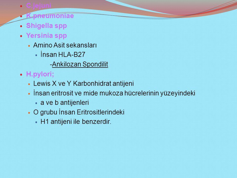 C.jejuni K.pneumoniae Shigella spp Yersinia spp Amino Asit sekansları İnsan HLA-B27 -Ankilozan Spondilit H.pylori; Lewis X ve Y Karbonhidrat antijeni İnsan eritrosit ve mide mukoza hücrelerinin yüzeyindeki a ve b antijenleri O grubu İnsan Eritrositlerindeki H1 antijeni ile benzerdir.