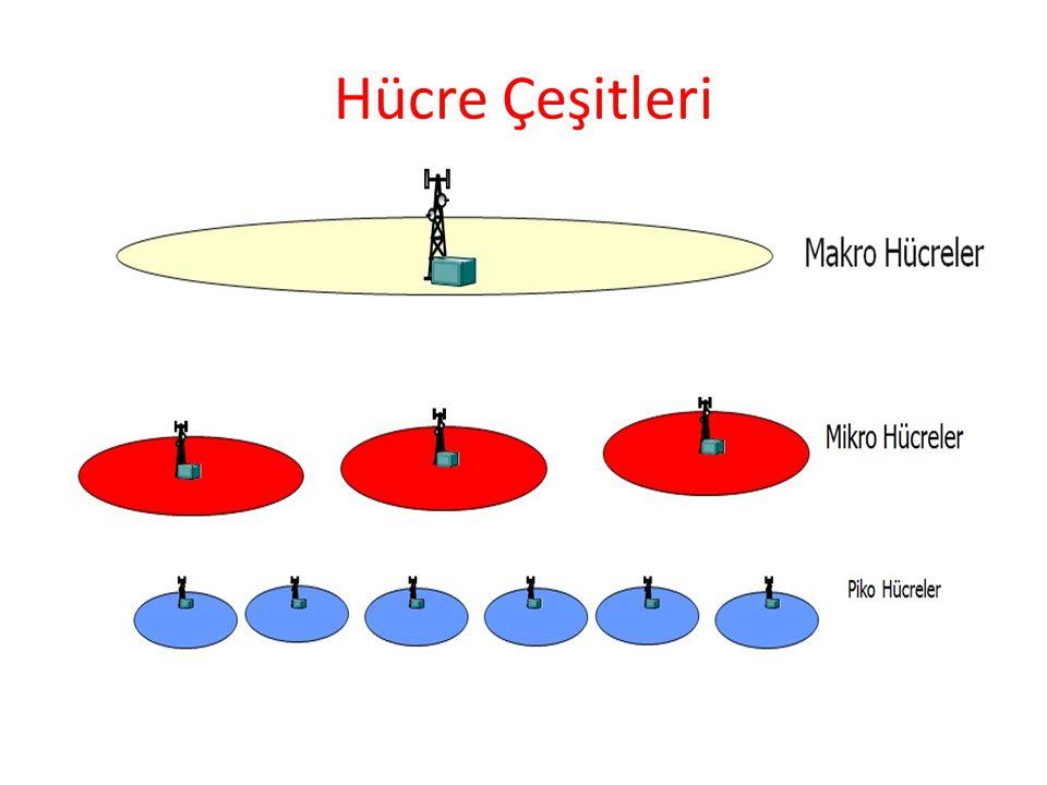 Hücre Çeşitleri