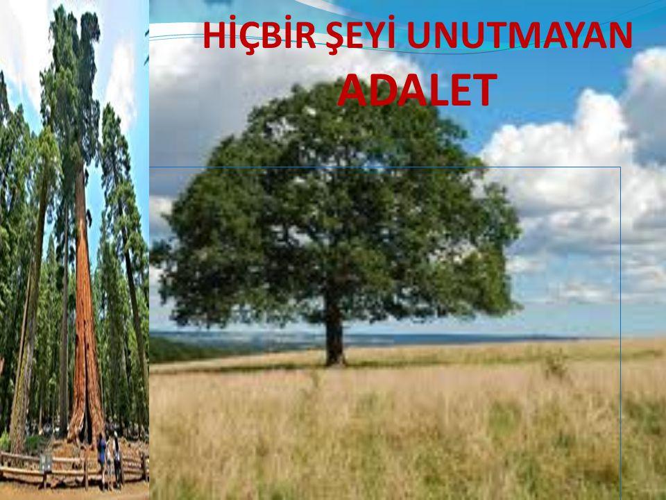 HİÇBİR ŞEYİ UNUTMAYAN ADALET
