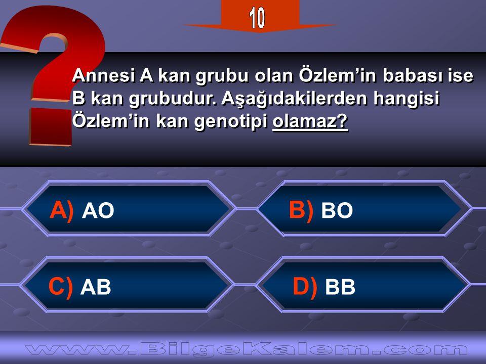 Annesi A kan grubu olan Özlem'in babası ise B kan grubudur.
