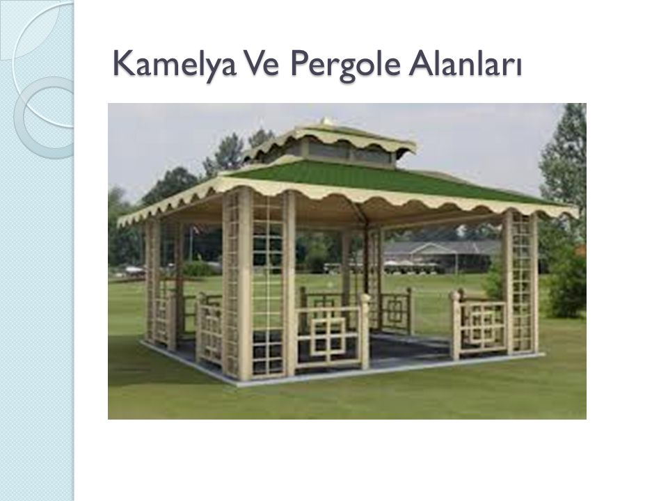 Kamelya Ve Pergole Alanları