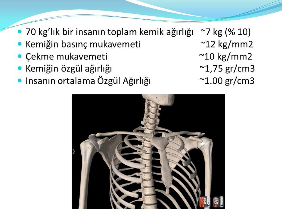 70 kg'lık bir insanın toplam kemik ağırlığı ~7 kg (% 10) Kemiğin basınç mukavemeti ~12 kg/mm2 Çekme mukavemeti ~10 kg/mm2 Kemiğin özgül ağırlığı ~1,75