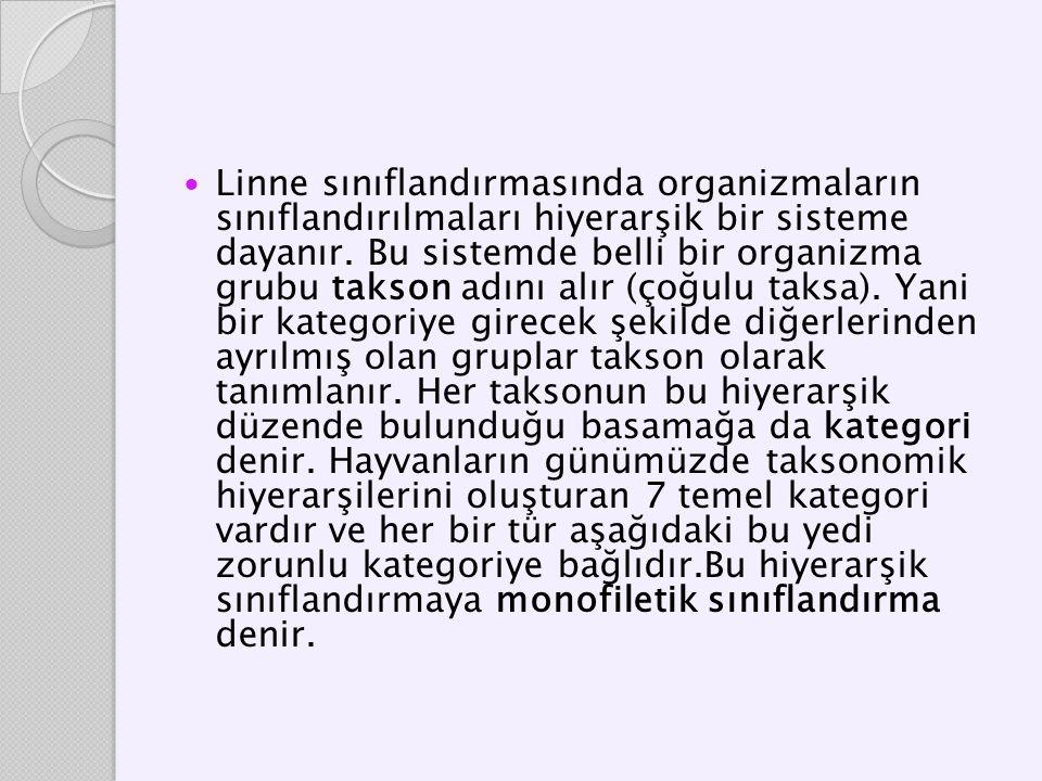 Linne sınıflandırmasında organizmaların sınıflandırılmaları hiyerarşik bir sisteme dayanır. Bu sistemde belli bir organizma grubu takson adını alır (ç