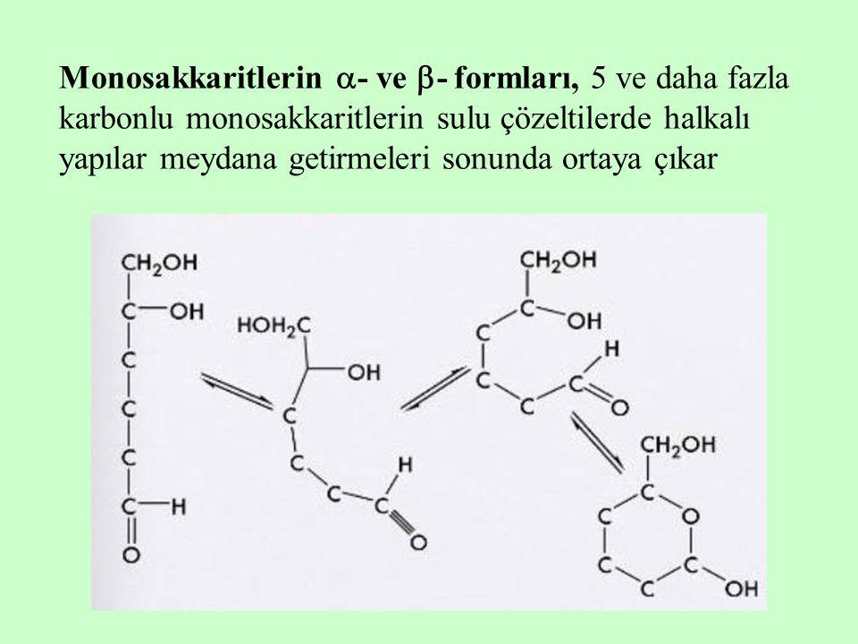 Monosakkaritlerin  - ve  - formları, 5 ve daha fazla karbonlu monosakkaritlerin sulu çözeltilerde halkalı yapılar meydana getirmeleri sonunda ortaya