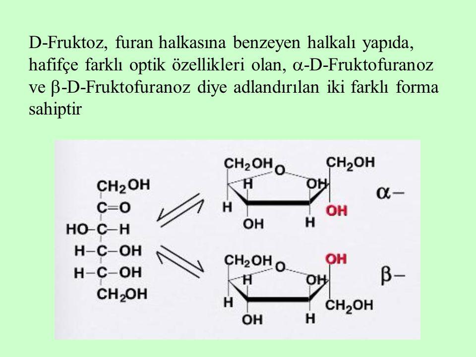 D-Fruktoz, furan halkasına benzeyen halkalı yapıda, hafifçe farklı optik özellikleri olan,  -D-Fruktofuranoz ve  -D-Fruktofuranoz diye adlandırılan