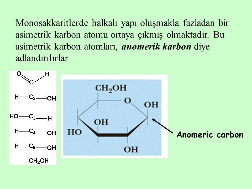 Monosakkaritlerde halkalı yapı oluşmakla fazladan bir asimetrik karbon atomu ortaya çıkmış olmaktadır. Bu asimetrik karbon atomları, anomerik karbon d