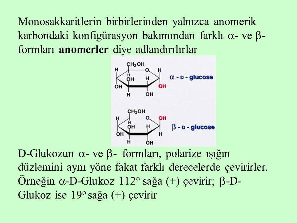 Monosakkaritlerin birbirlerinden yalnızca anomerik karbondaki konfigürasyon bakımından farklı  - ve  - formları anomerler diye adlandırılırlar D-Glu