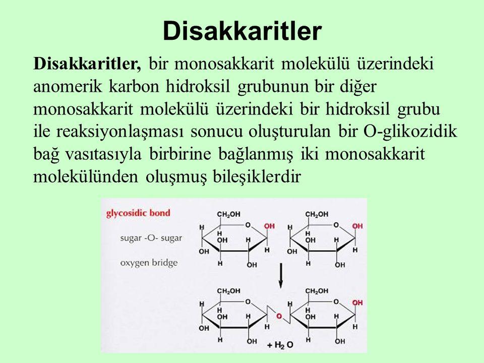 Disakkaritler Disakkaritler, bir monosakkarit molekülü üzerindeki anomerik karbon hidroksil grubunun bir diğer monosakkarit molekülü üzerindeki bir hi