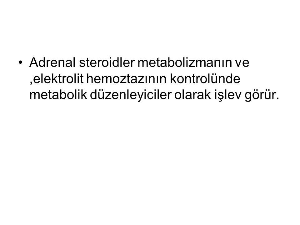Adrenal steroidler metabolizmanın ve,elektrolit hemoztazının kontrolünde metabolik düzenleyiciler olarak işlev görür.