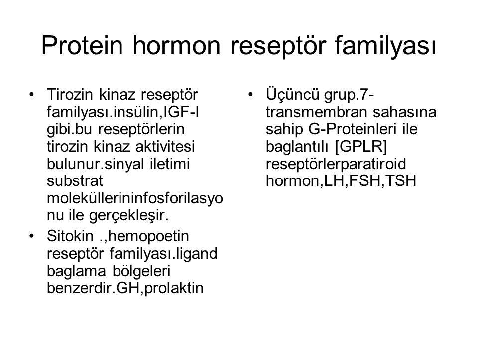Protein hormon reseptör familyası Tirozin kinaz reseptör familyası.insülin,IGF-l gibi.bu reseptörlerin tirozin kinaz aktivitesi bulunur.sinyal iletimi
