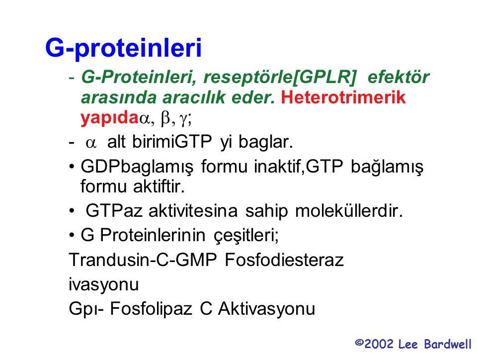 G-proteinleri -G-Proteinleri, reseptörle[GPLR] efektör arasında aracılık eder. Heterotrimerik yapıda  ; -  alt birimiGTP yi baglar. GDPbaglamı