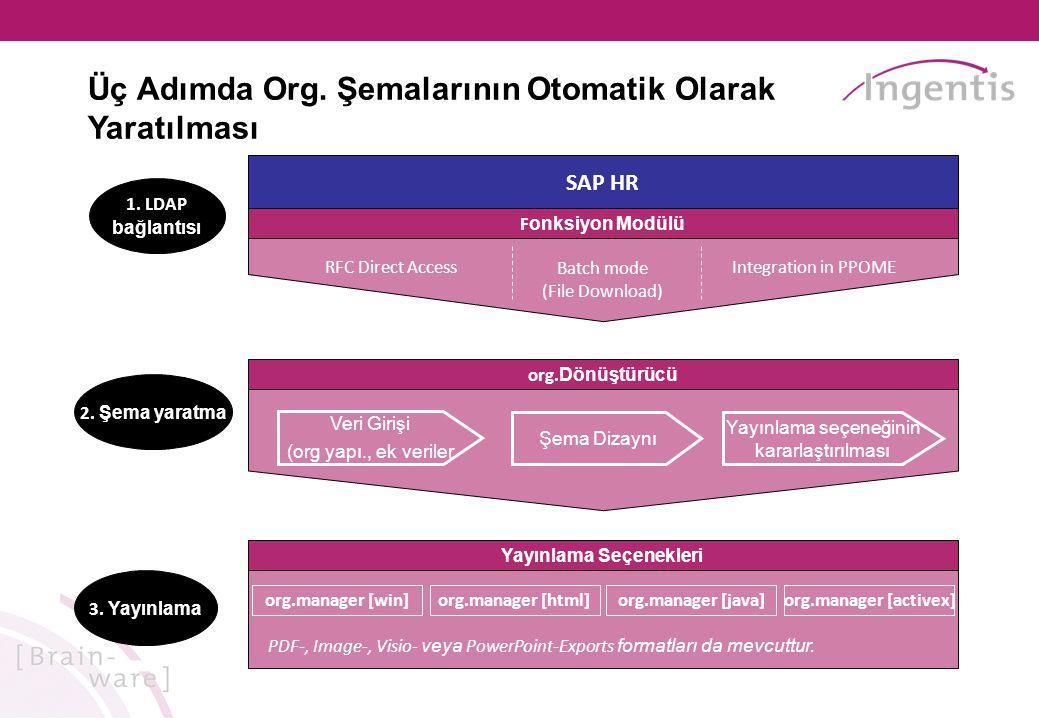Yayınlama Seçenekleri org.