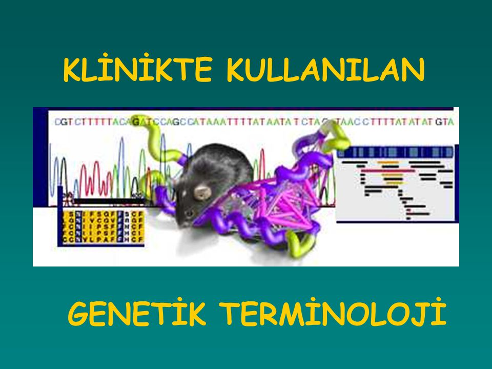 Klinikte kullanılan genetik terminolojiler ile ilgili temel bilgilerin sunulması AMAÇ Mutasyon ve polimorfizm İnsan Genom Projesi IVS 33 +2T>A Glu39X (Q39X) Ekson-İntron DNA Genetik Test Bağlantı Analizi Gen Klonlanması D2S1376 Dizi analiz Kromozom 46,XY 46,XX