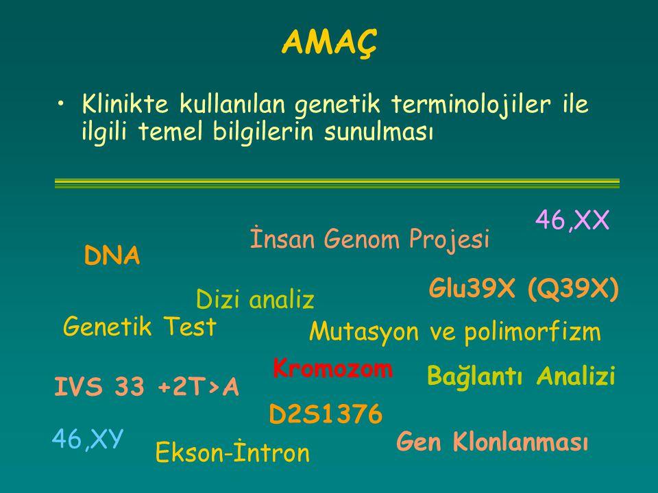 Klinikte kullanılan genetik terminolojiler ile ilgili temel bilgilerin sunulması AMAÇ Mutasyon ve polimorfizm İnsan Genom Projesi IVS 33 +2T>A Glu39X
