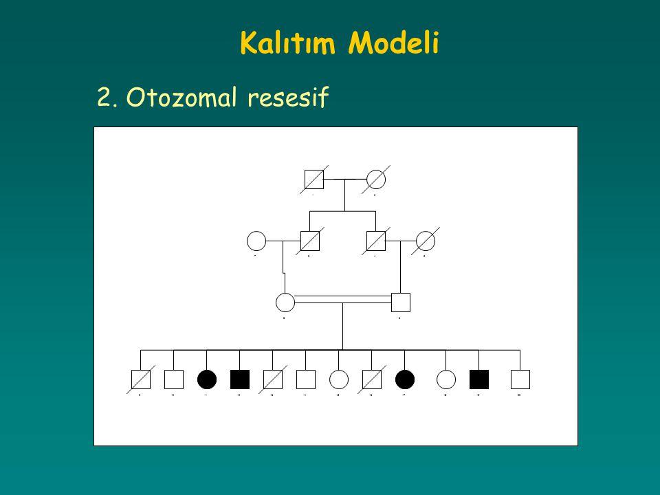 Kalıtım Modeli 2. Otozomal resesif 12 345 6 7 8 91011121314151617181920
