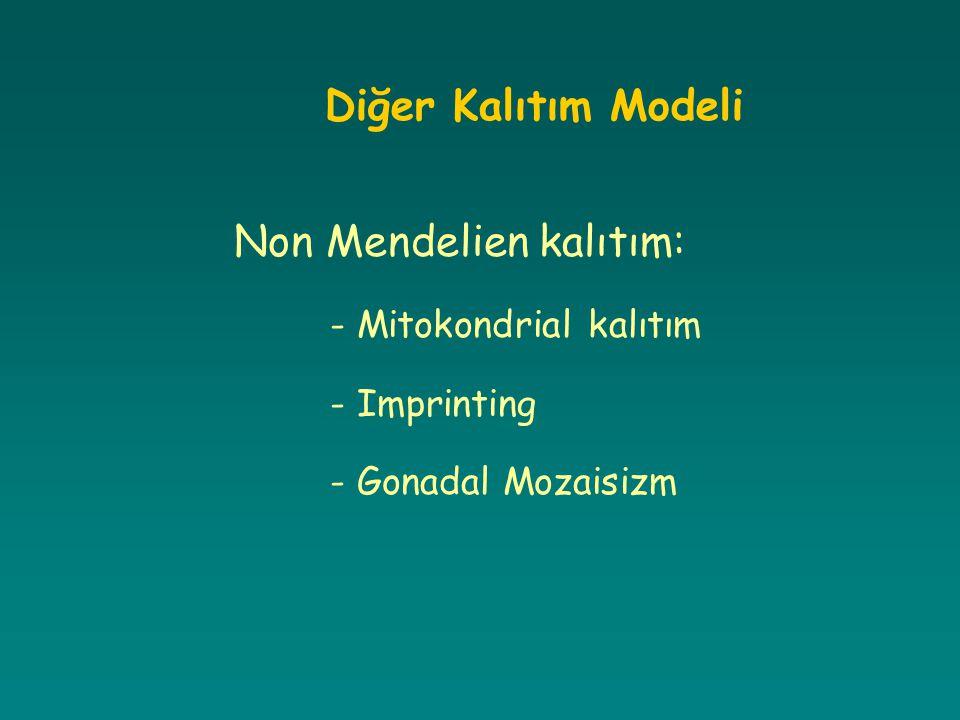 Diğer Kalıtım Modeli Non Mendelien kalıtım: - Mitokondrial kalıtım - Imprinting - Gonadal Mozaisizm