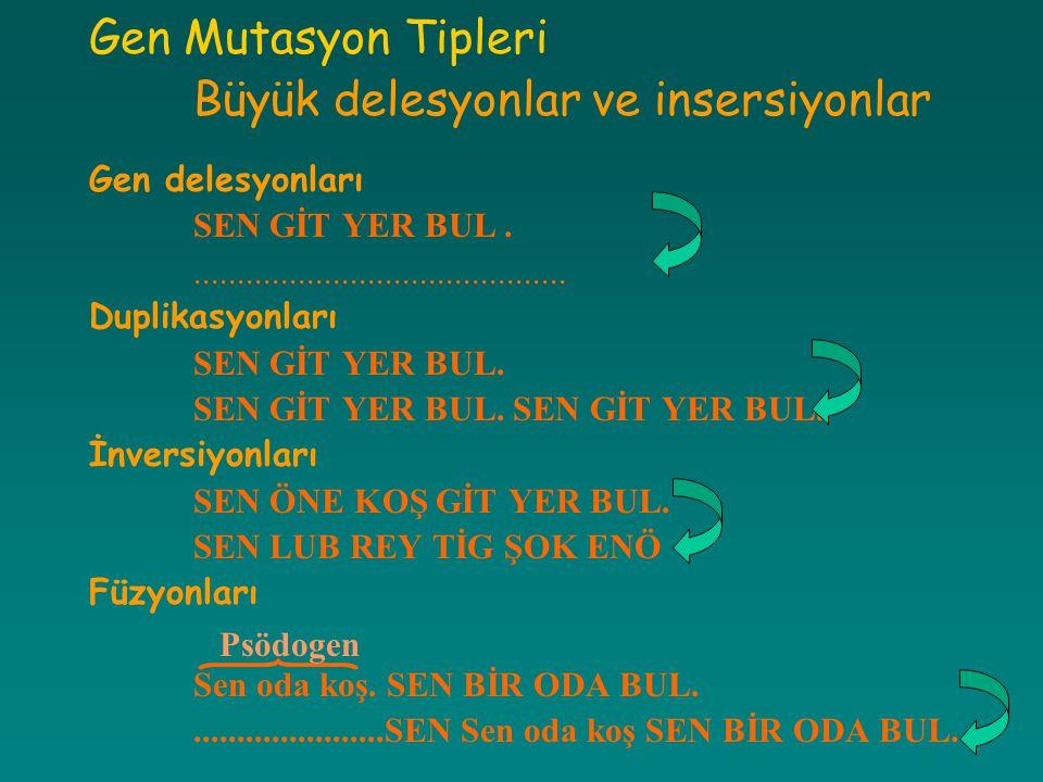 Gen Mutasyon Tipleri Büyük delesyonlar ve insersiyonlar Gen delesyonları SEN GİT YER BUL............................................ Duplikasyonları S