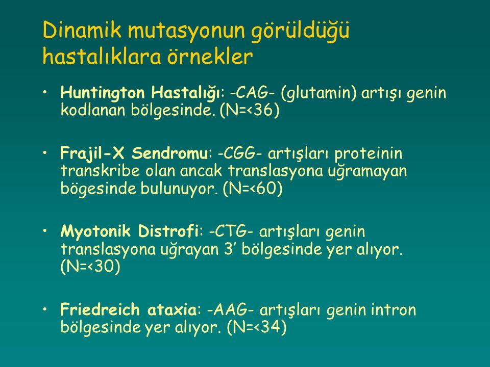 Dinamik mutasyonun görüldüğü hastalıklara örnekler Huntington Hastalığı: -CAG- (glutamin) artışı genin kodlanan bölgesinde. (N=<36) Frajil-X Sendromu: