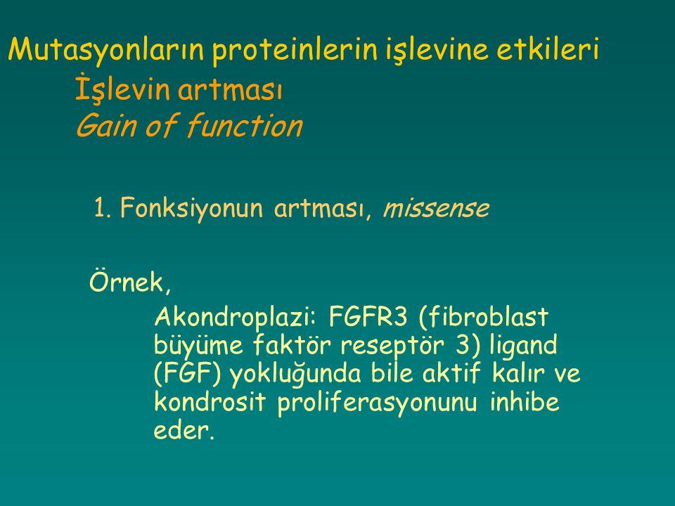 Mutasyonların proteinlerin işlevine etkileri İşlevin artması Gain of function 1. Fonksiyonun artması, missense Örnek, Akondroplazi: FGFR3 (fibroblast