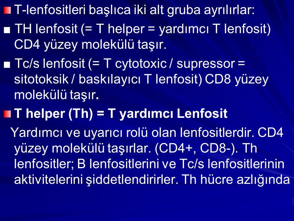 T-lenfositleri başlıca iki alt gruba ayrılırlar: ■ TH lenfosit (= T helper = yardımcı T lenfosit) CD4 yüzey molekülü taşır. ■ Tc/s lenfosit (= T cytot