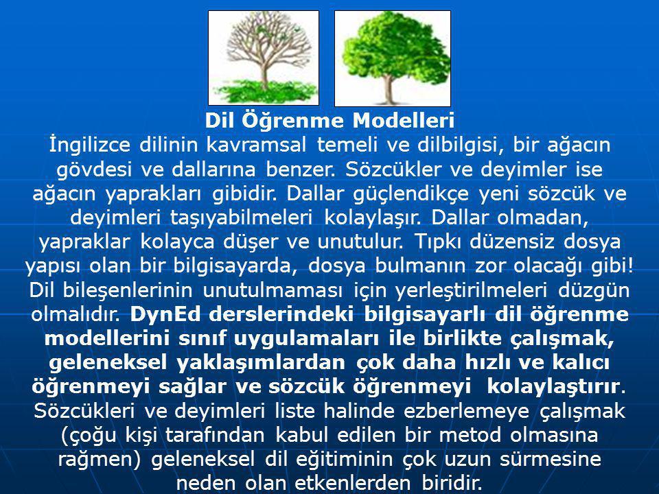 Dil Öğrenme Modelleri İngilizce dilinin kavramsal temeli ve dilbilgisi, bir ağacın gövdesi ve dallarına benzer.