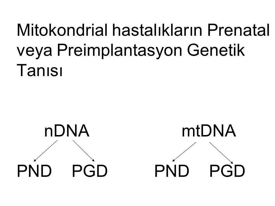 Mitokondrial hastalıkların Prenatal veya Preimplantasyon Genetik Tanısı nDNAmtDNA PNDPGDPNDPGD