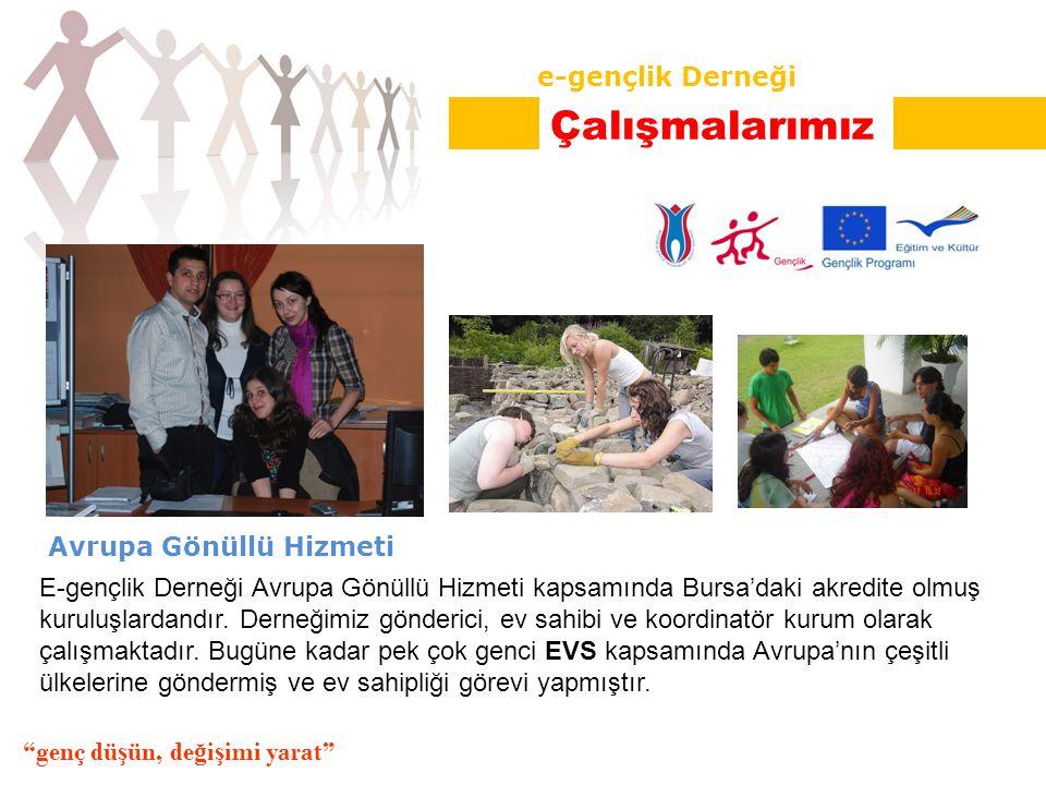 Avrupa Gönüllü Hizmeti E-gençlik Derneği Avrupa Gönüllü Hizmeti kapsamında Bursa'daki akredite olmuş kuruluşlardandır.