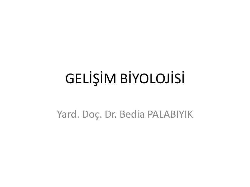 GELİŞİM BİYOLOJİSİ Yard. Doç. Dr. Bedia PALABIYIK