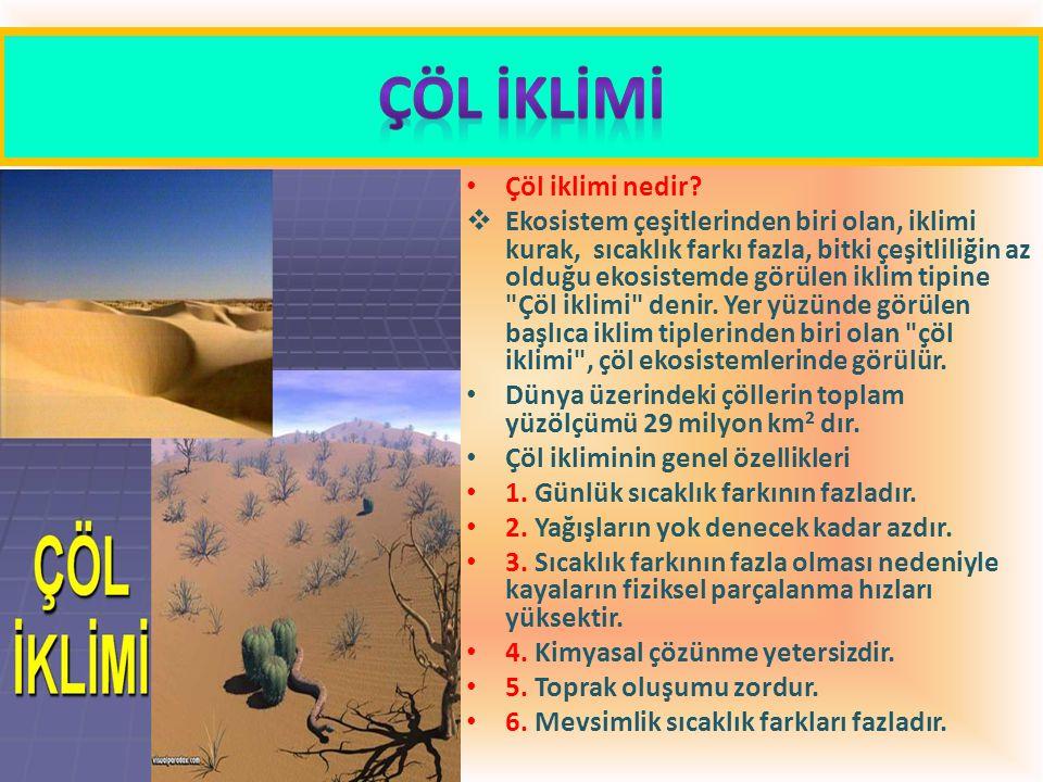 Çöl iklimi nedir?  Ekosistem çeşitlerinden biri olan, iklimi kurak, sıcaklık farkı fazla, bitki çeşitliliğin az olduğu ekosistemde görülen iklim tipi