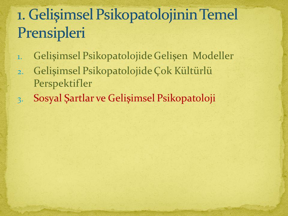 1.Gelişimsel Psikopatolojide Gelişen Modeller 2.