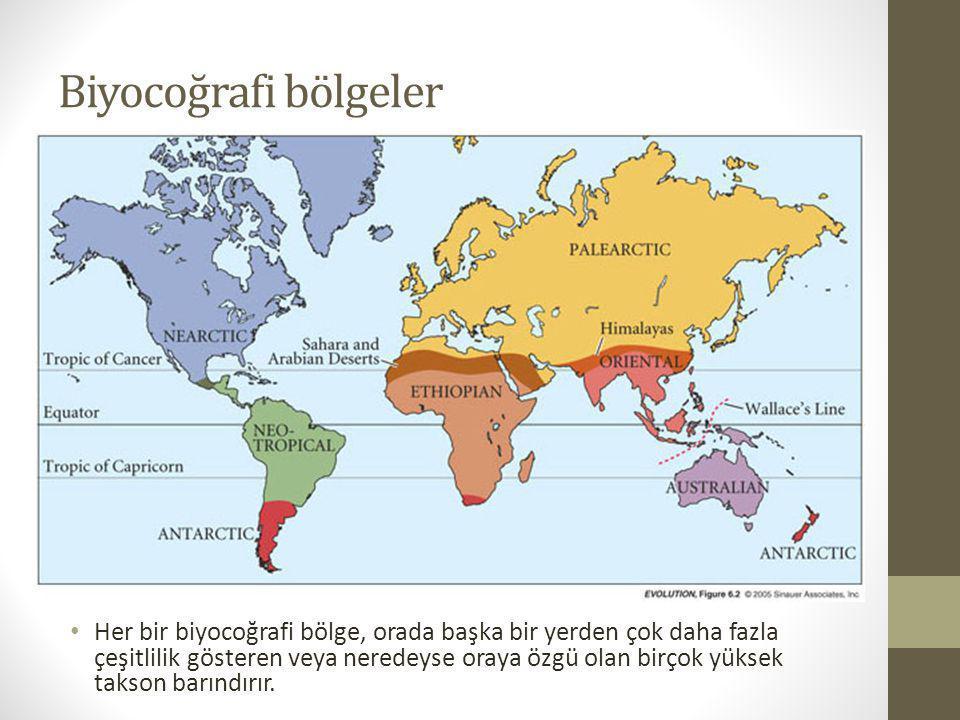 Biyocoğrafi bölgeler Her bir biyocoğrafi bölge, orada başka bir yerden çok daha fazla çeşitlilik gösteren veya neredeyse oraya özgü olan birçok yüksek