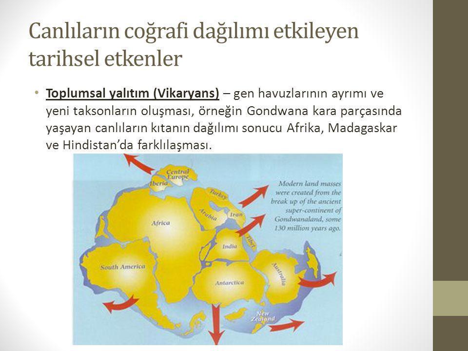 Canlıların coğrafi dağılımı etkileyen tarihsel etkenler Toplumsal yalıtım (Vikaryans) – gen havuzlarının ayrımı ve yeni taksonların oluşması, örneğin