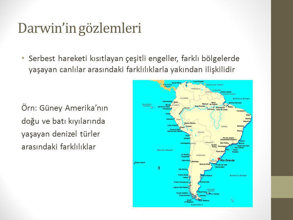 Darwin'in gözlemleri Aynı bölgelerde (kıta veya deniz) yaşayan türler birbirleri ile ilişkilidir.